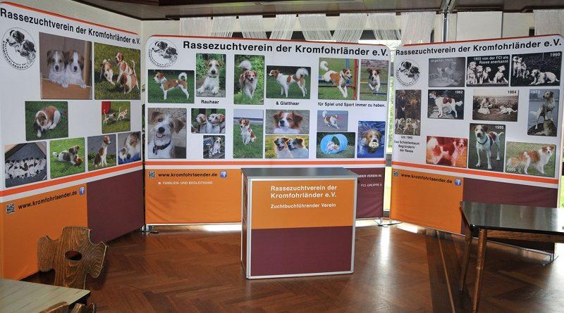 Seminare, Fortbildungen rund um den Hund