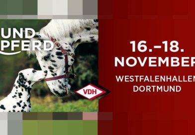 Bundessieger/Internationale Ausstellung in Dortmund November 2018