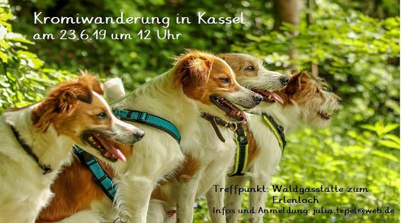 Kromiwanderung in Kassel